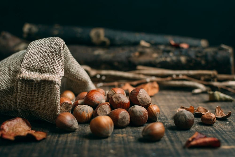 Miel de castaño: propiedades medicinales