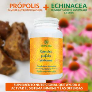 Cápsulas de própolis-echinacea, 500 mg, 120 u.